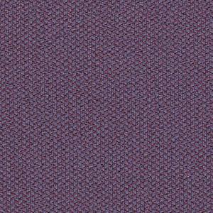 ERA : C09 - Фіолетовий