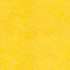 PET felt : B26 - Жовтий