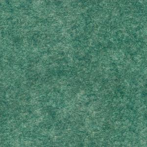 PET felt : B44 - Зелений